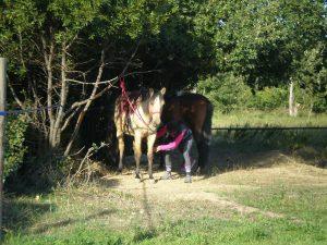 départ week-end corbières à cheval